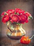 Ranunculus flowers Royalty Free Stock Photo