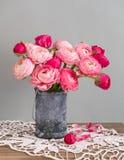 Ranunculusblumen in einem Vase lizenzfreies stockbild