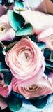 Ranunculusblumen nah Schöner künstlerischer Blumenstraußentwurf lizenzfreies stockbild