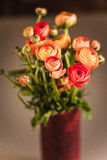 Ranunculuses Bouquet in the red vase on a blured beige background Royalty Free Stock Photos
