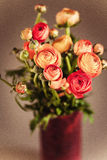 Ranunculuses Bouquet in the red vase on a blured beige background Royalty Free Stock Photo