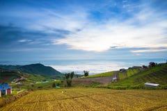 Rapa dell'azienda agricola del parco, montagna, paesino di montagna Fotografie Stock Libere da Diritti