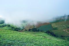 Rapa dell'azienda agricola del parco, montagna, paesino di montagna Immagine Stock Libera da Diritti