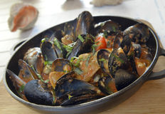 Rapana and mussels in tomato sauce Royalty Free Stock Images