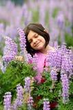 Rapariga bonito na correcção de programa de flores selvagens roxas fotos de stock royalty free
