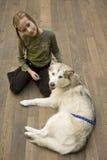 Rapariga com cão Fotos de Stock Royalty Free