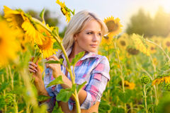 Rapariga em um campo dos girassóis imagens de stock royalty free