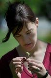 Rapariga que olha o dente-de-leão Imagens de Stock