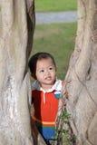 Rapaz pequeno atrás da árvore foto de stock royalty free