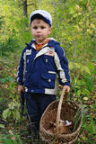 Rapaz pequeno bonito com a cesta dos cogumelos Foto de Stock