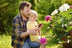Rapaz pequeno bonito com seu pai que trabalha junto com o secateur no jardim doméstico imagens de stock