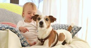 Rapaz pequeno bonito e cães engraçados em casa filme
