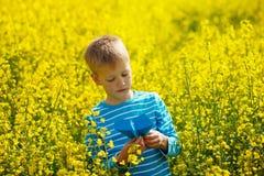 Rapaz pequeno bonito e feliz que joga com o avião de papel em d ensolarado imagens de stock