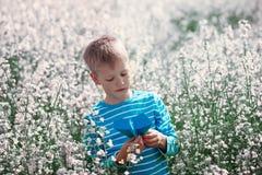 Rapaz pequeno bonito e feliz que joga com o avião de papel no blosso fotos de stock