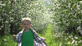 Rapaz pequeno bonito no pomar da natureza, correndo a, da flor, na felicidade, na alegria e na pressa filme
