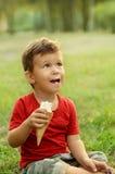 Rapaz pequeno bonito que come o gelado Foto de Stock