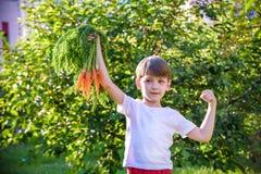 Rapaz pequeno bonito que guarda um grupo de cenouras org?nicas frescas no jardim dom?stico Estilo de vida saud?vel da fam?lia Tem foto de stock royalty free