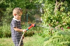 Rapaz pequeno bonito que molha o jardim com mangueira fotografia de stock royalty free