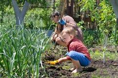 Rapaz pequeno bonito que remove ervas daninhas do jardim vegetal Imagens de Stock Royalty Free