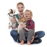 Rapaz pequeno, cães e mãe Foto de Stock Royalty Free