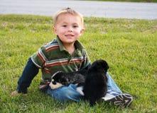 Rapaz pequeno com filhotes de cachorro fotos de stock royalty free