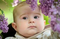 Rapaz pequeno com flores Foto de Stock