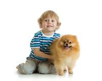 Rapaz pequeno com o spitz do cão, isolado no fundo branco foto de stock