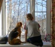 Rapaz pequeno com seu cão que olha através da janela Imagens de Stock Royalty Free