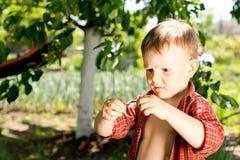 Rapaz pequeno com uma expressão confundida Fotos de Stock Royalty Free