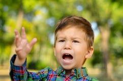 Rapaz pequeno de grito Imagens de Stock