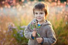 Rapaz pequeno doce, guardando flores no por do sol Fotos de Stock