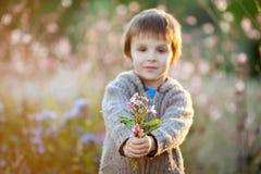 Rapaz pequeno doce, guardando flores no por do sol Fotos de Stock Royalty Free