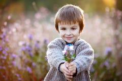 Rapaz pequeno doce, guardando flores no por do sol Imagem de Stock