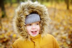 Rapaz pequeno durante a caminhada na floresta no dia ensolarado frio do outono imagem de stock
