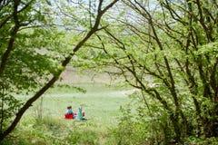 Rapaz pequeno e bebê que sentam-se em um fundo da paisagem verde fotos de stock