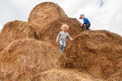 Rapaz pequeno e menina em um campo de trigo fotografia de stock royalty free