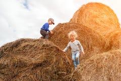 Rapaz pequeno e menina em um campo de trigo imagens de stock