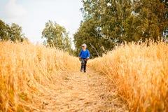Rapaz pequeno em um campo de trigo fotos de stock royalty free