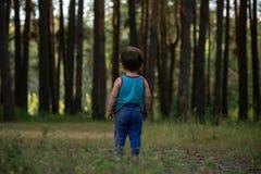 Rapaz pequeno em um gramado na frente de uma grande floresta do pinho imagem de stock