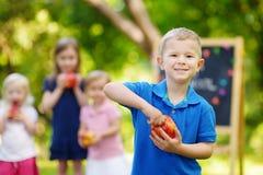 Rapaz pequeno entusiasmado que vai para trás à escola Foto de Stock