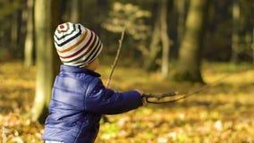 Rapaz pequeno feliz que joga com as folhas de outono que jogam as folhas no movimento lento video estoque