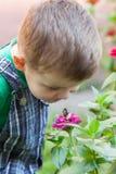 Rapaz pequeno feliz que joga no parque com o caracol no tempo do dia Miúdo observando o caracol Imagem de Stock Royalty Free