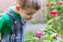 Rapaz pequeno feliz que joga no parque com o caracol no tempo do dia Miúdo observando o caracol Fotos de Stock Royalty Free