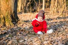Rapaz pequeno na floresta do ar livre Fotos de Stock