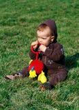 Rapaz pequeno na grama verde Foto de Stock