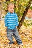 Rapaz pequeno no parque do outono. Foto de Stock Royalty Free