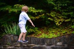 Rapaz pequeno que anda no parque no verão Fotografia de Stock Royalty Free