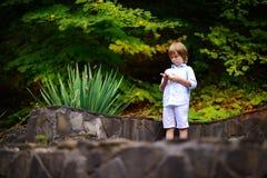 Rapaz pequeno que anda no parque no verão Imagem de Stock