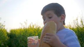 Rapaz pequeno que bebe do vidro com pão do naco à disposição fora, agua potável da bebida da criança no prado no luminoso vídeos de arquivo