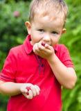 Rapaz pequeno que come a framboesa Imagem de Stock